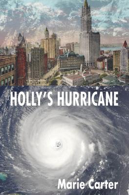 HOLLY'S HURRICANE is a FINALIST for the Montaigne Medal